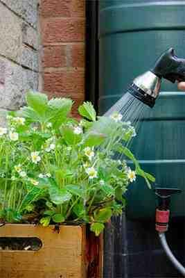 Comment filtrer l'eau de pluie avant le réservoir?