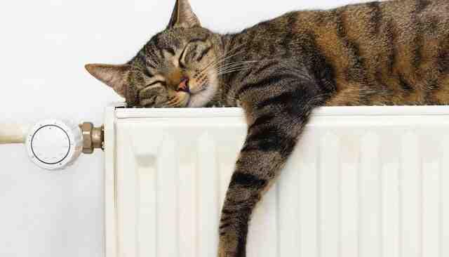 Comment utiliser sa pompe à chaleur ?