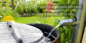 Écoconstruction Comment faire de l'eau potable avec de l'eau de pluie ?