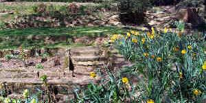 Écoconstruction Comment faire pour aménagement d'un jardin en pente ?