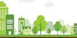 Écoconstruction Quels sont les 3 types de matériaux naturels ?