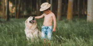 Quel est le meilleur cadeau pour les enfants qui aiment les chiens